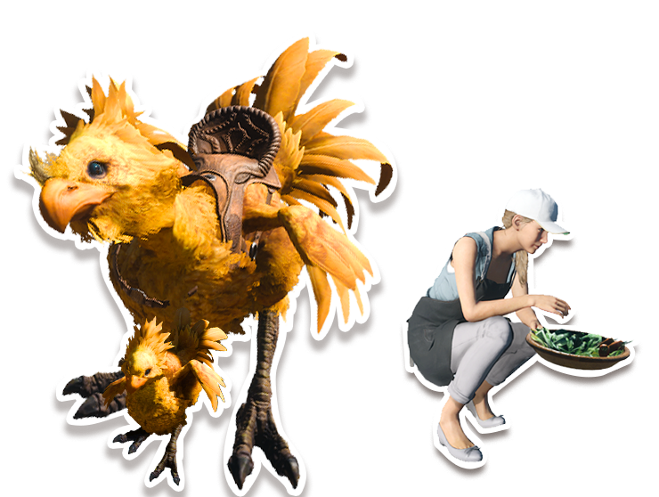 how to get a chocobo ffxv